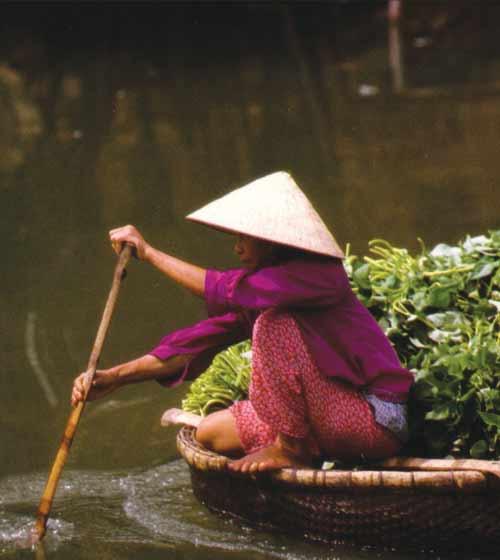 Vietnam made easy